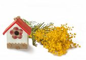 Decorative Birdhouse And Mimosa  On White Background