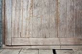 image of termite  - Termite trespass in the wood old door - JPG