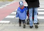 stock photo of zebra crossing  - Father with child and buggy crossing the road on a pedestrian zebra crosswalk - JPG