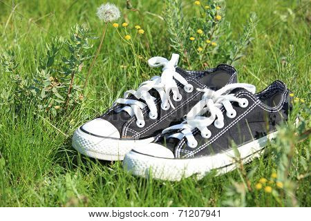Pair of shoes on green grass