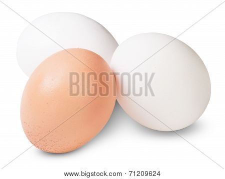 Two White And One Brown Egg