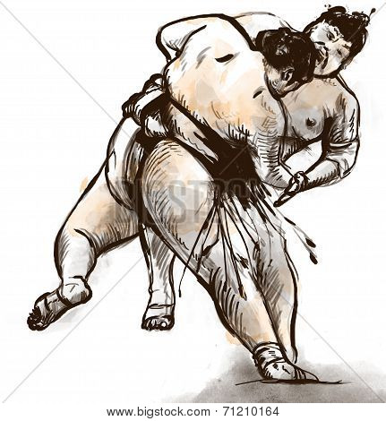 Sumo fighters