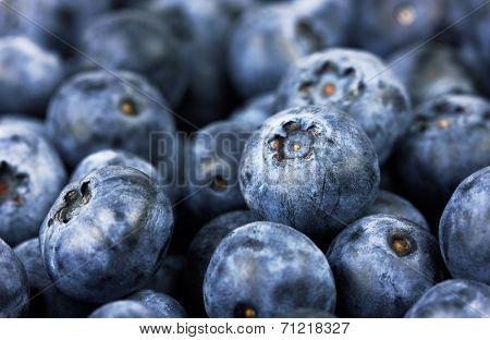 Fresh blueberries background, closeup