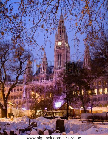 Vienna- town-hall in winter morning