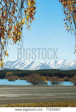 The road  along the Lake Tekapo in autumn , Canterbury, South Island, New Zealand