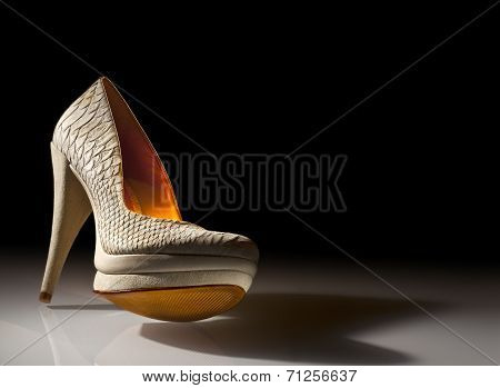 Elegant Ladies Shoes On A Black Background