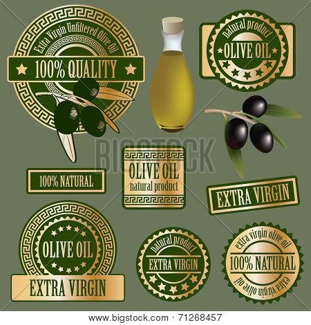 Olive branch products isolated on grey background