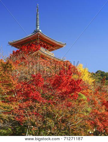 Kyoto, Japan at Kiyomizudera Temple in the autumn season.