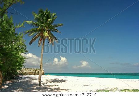 Sam Lord's Beach