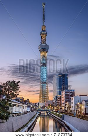 TOKYO, JAPAN - NOVEMBER 12, 2012: Tokyo Skytree rises above the skyline of Tokyo. The structure is the tallest in the country.