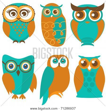 Vector owl set, cute owls and birds in orange and green colors