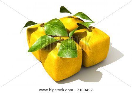 Lemon Pack