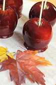 stock photo of toffee  - Making red toffee apples for Halloween trick or treat food candy on baking paper and baking rack with autumn Fall leaf against an orange background  - JPG
