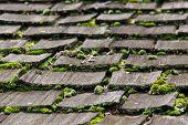 stock photo of shingles  - Wood shingles on an old roof - JPG