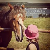picture of nostril  - instagram of young girl petting horse in a field with inspirational quote - JPG