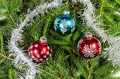 stock photo of ball chain  - Three Christmas balls with silver chain on spruce branches - JPG