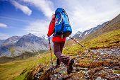 foto of siberia  - Hiker near Belukha Mountain the highest in Siberia - JPG