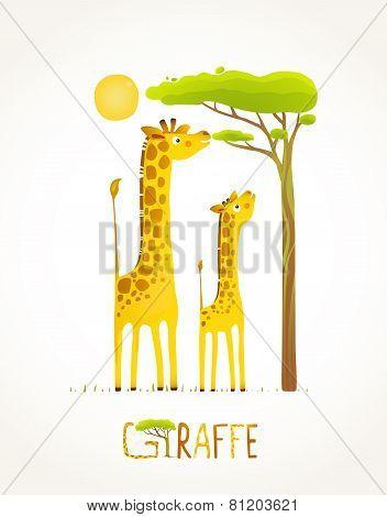 Fun Cartoon African Giraffe Animals Eating Foliage