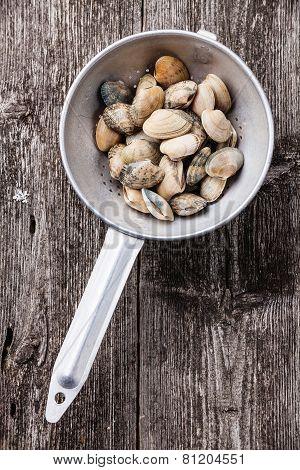 Raw Shells Vongole In Colander On Wooden Background