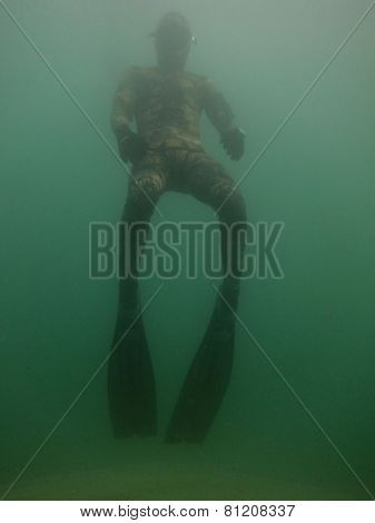 Diver With Long Flowing