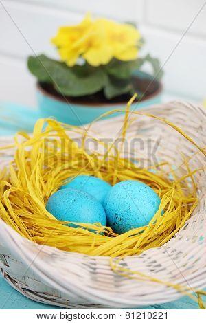 Turquoise Eggs