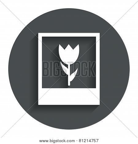 Macro photo frame icon. Flower photography.