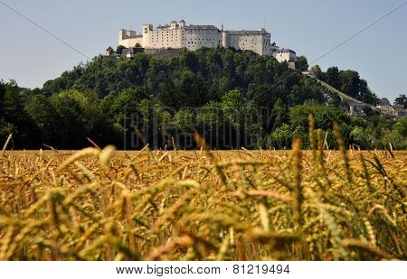General view of castle in Salzburg, Hohensalzburg, Austria