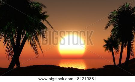 3D render of a tropical landscape against a sunset sky