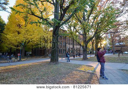 Tokyo, Japan - November 22, 2013: Students At University Of Tokyo