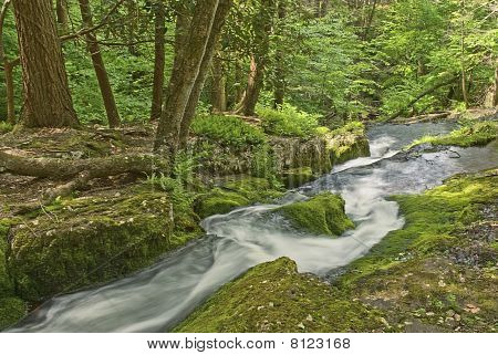 Tillmans Ravine Stream
