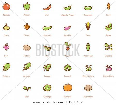 Set of the vegetables related icon