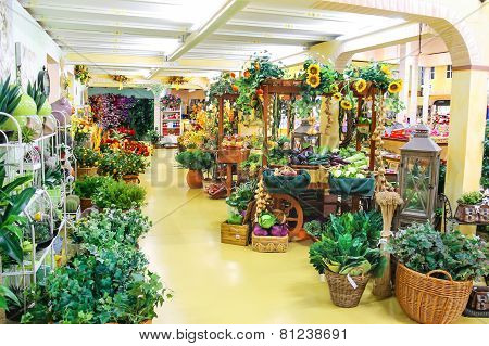 Ornamental Plants In The Garden Center Mondoverde. Taneto, Italy