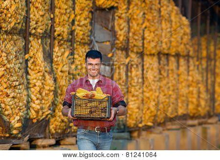 Farmer With Corn Cobs