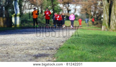 Cross Country Running With Athletes In The Outdoor Park
