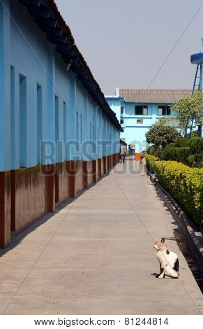 TITAGARH, INDIA - FEBRUARY 02: Gandhiji Prem Nivas( Leprosy centre), one of the houses established by Mother Teresa and run by the Missionaries of Charity in Titagarh, India on February 02, 2009.