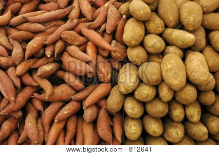 Potato Pile