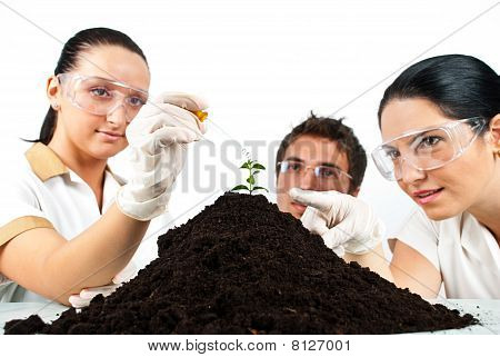 Botanical Scientist Team