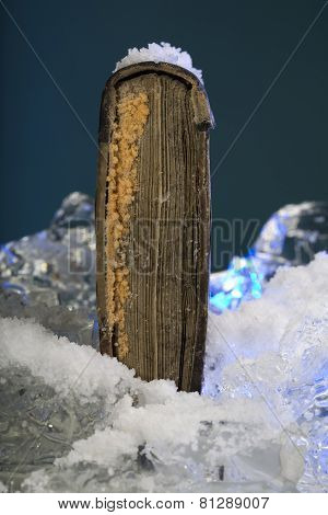 Scarce book on frozen ice in studio