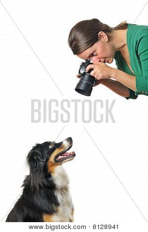Photographing A Dog
