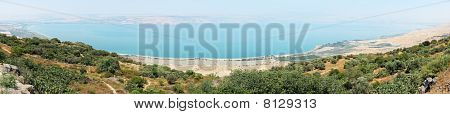 Panorama Of Kinneret Entirely