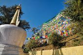 image of himachal pradesh  - Colorful buddhist prayer flags in town of Dharamshala Himachal Pradesh India - JPG