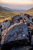 picture of prehistoric animal  - Ancient petroglyphs of animals on rock on Saimaluu Tash site in Kyrgyzstan - JPG