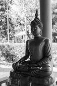 image of alloys  - alloy buddha image in front of the pole - JPG