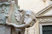 stock photo of obelisk  - the marble elephant obelisk in rome near pantheon italy - JPG