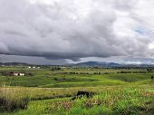 pic of hayfield  - rural scenery around Vientiane in Laos a country in Southeast Asia - JPG