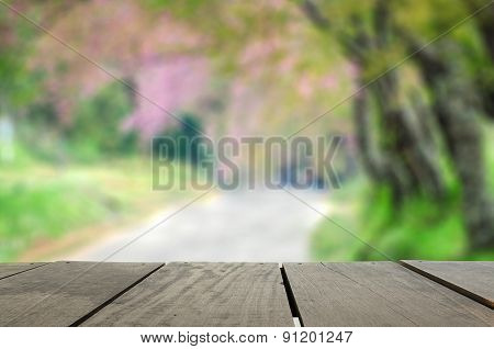 Defocus And Blur Background Of Terrace Wood And Beautiful Spring
