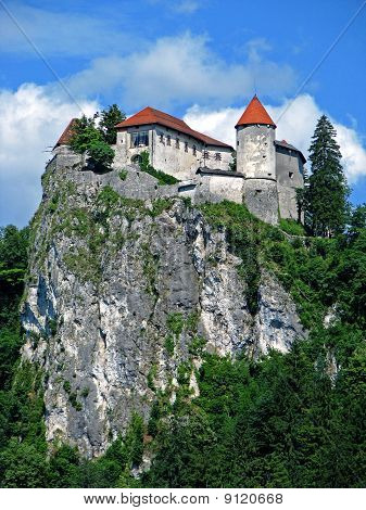 Bled castle closeup