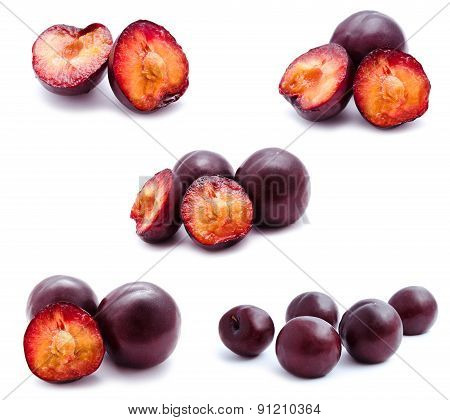 Collection Of Photos Plums Fruit Isolated