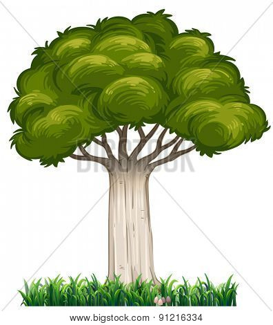 Closeup single tree with grass underneath