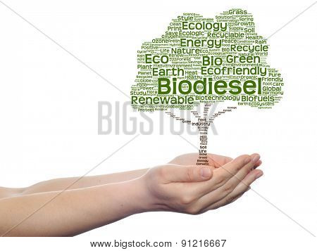 Concept or conceptual green ecology text word cloud tree in man or woman hand isolated on white background